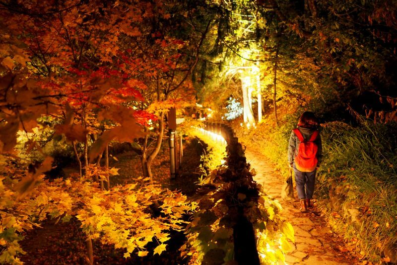 Best Places to View Autumn Leaves in Hokkaido vol. 1