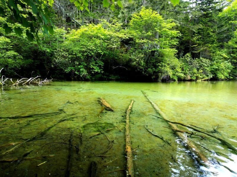 Trek to the Mysterious and Magnificent Lake Akan