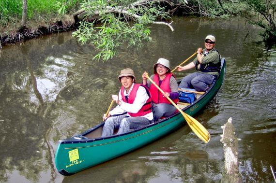 Downstream Canoe Tour of the Kushiro Wetland (Regular Course)