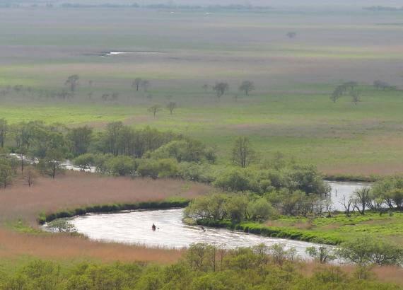 Enjoy a Custom Canoe Tour of the Kushiro Wetland