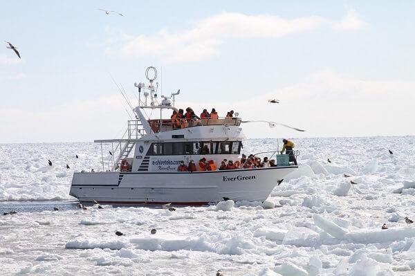 Staying Chill on a Shiretoko Drift Ice Cruise