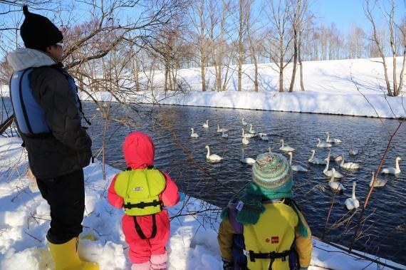 Discover the Wintertime Wonders of the Obihiro River by Boat