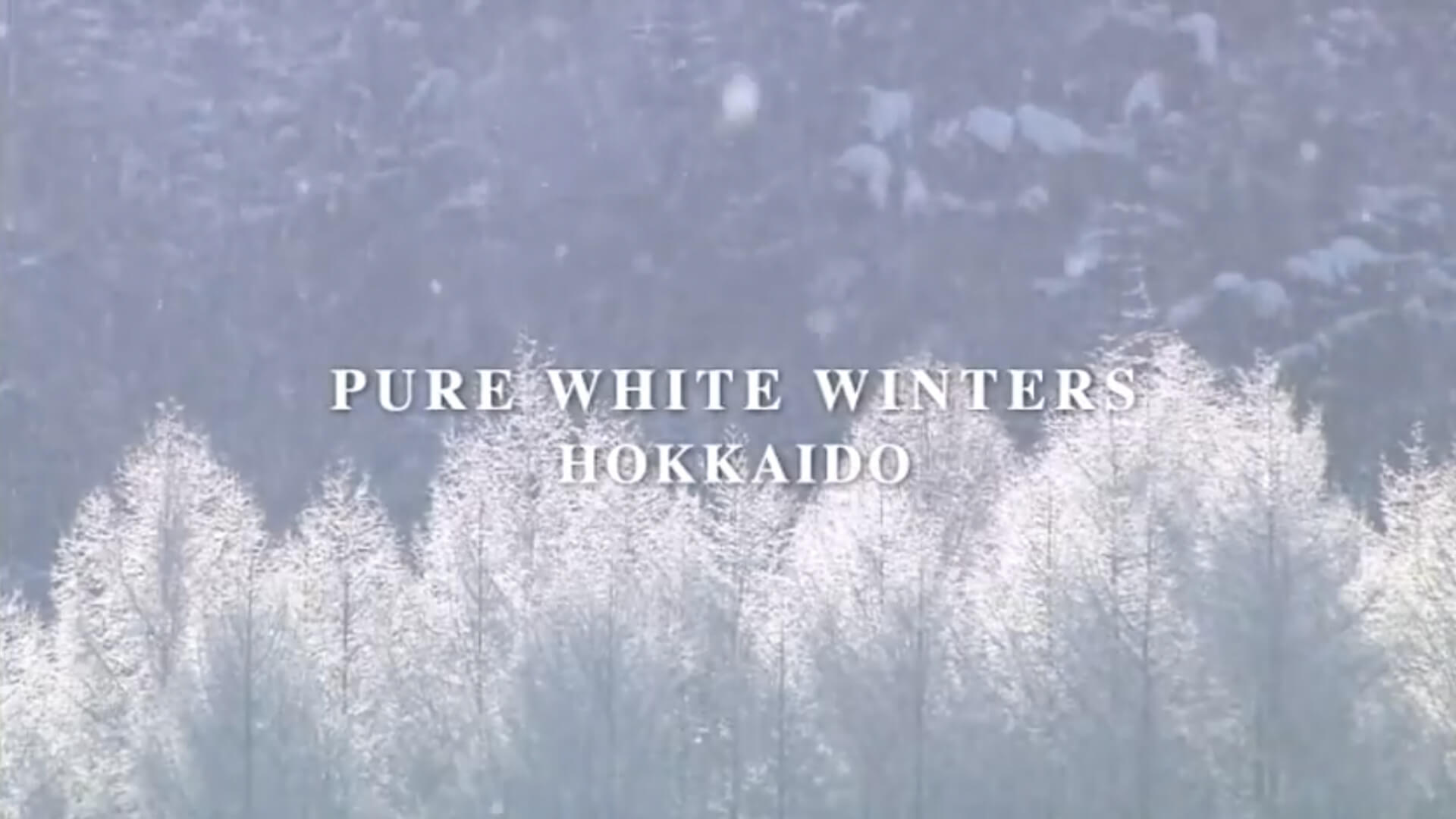 Pure White Winters