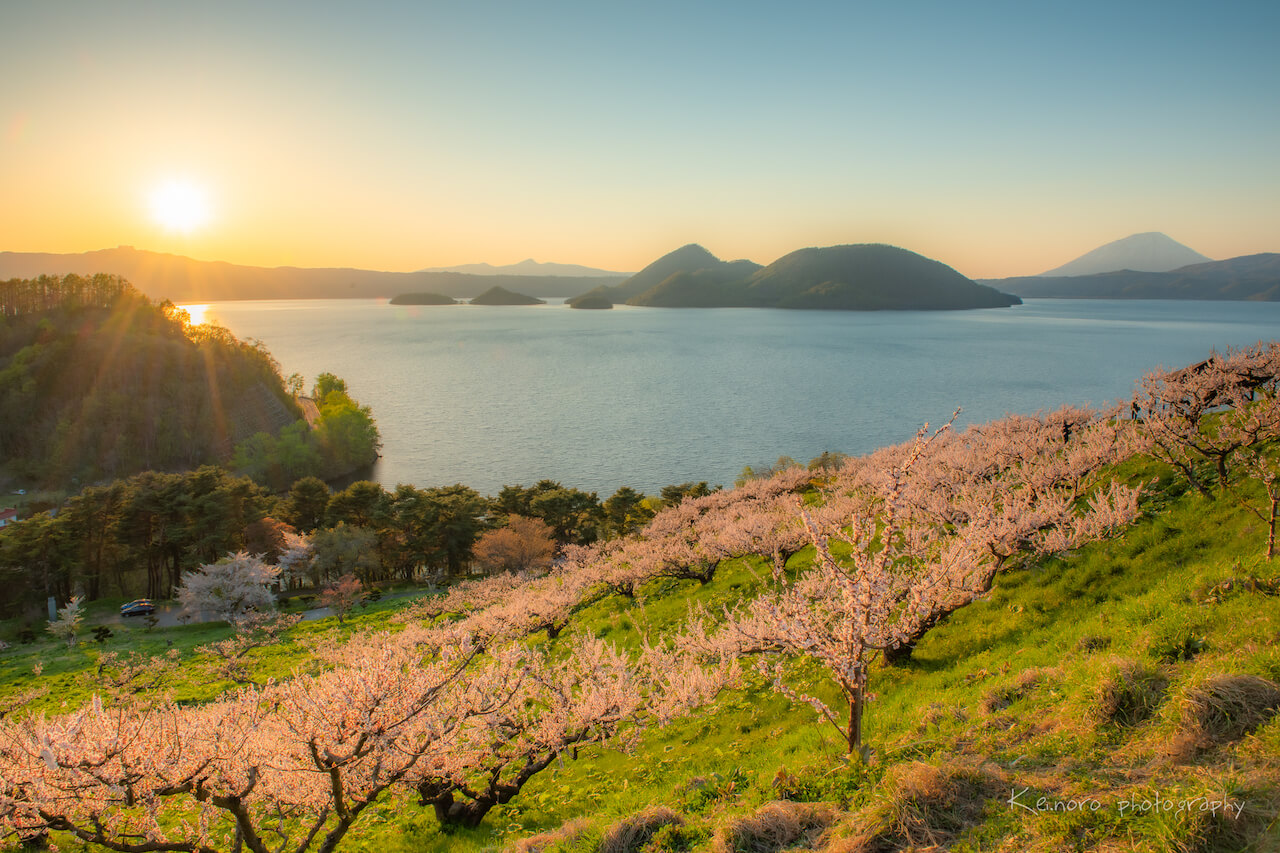 Sobetsu-cho in May, after the harsh winter. About 300 plum trees are planted in Sobetsu Park, which is in full bloom from mid-May. ©Noro Keiichi
