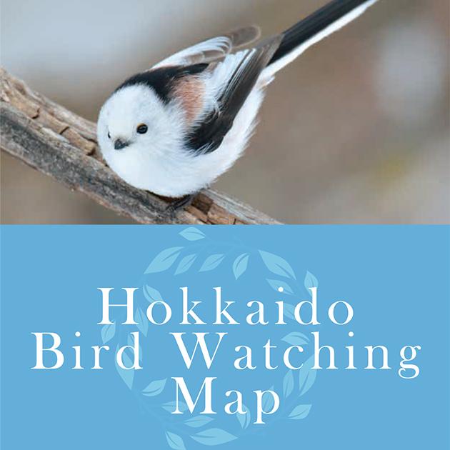 Hokkaido Bird Watching Map