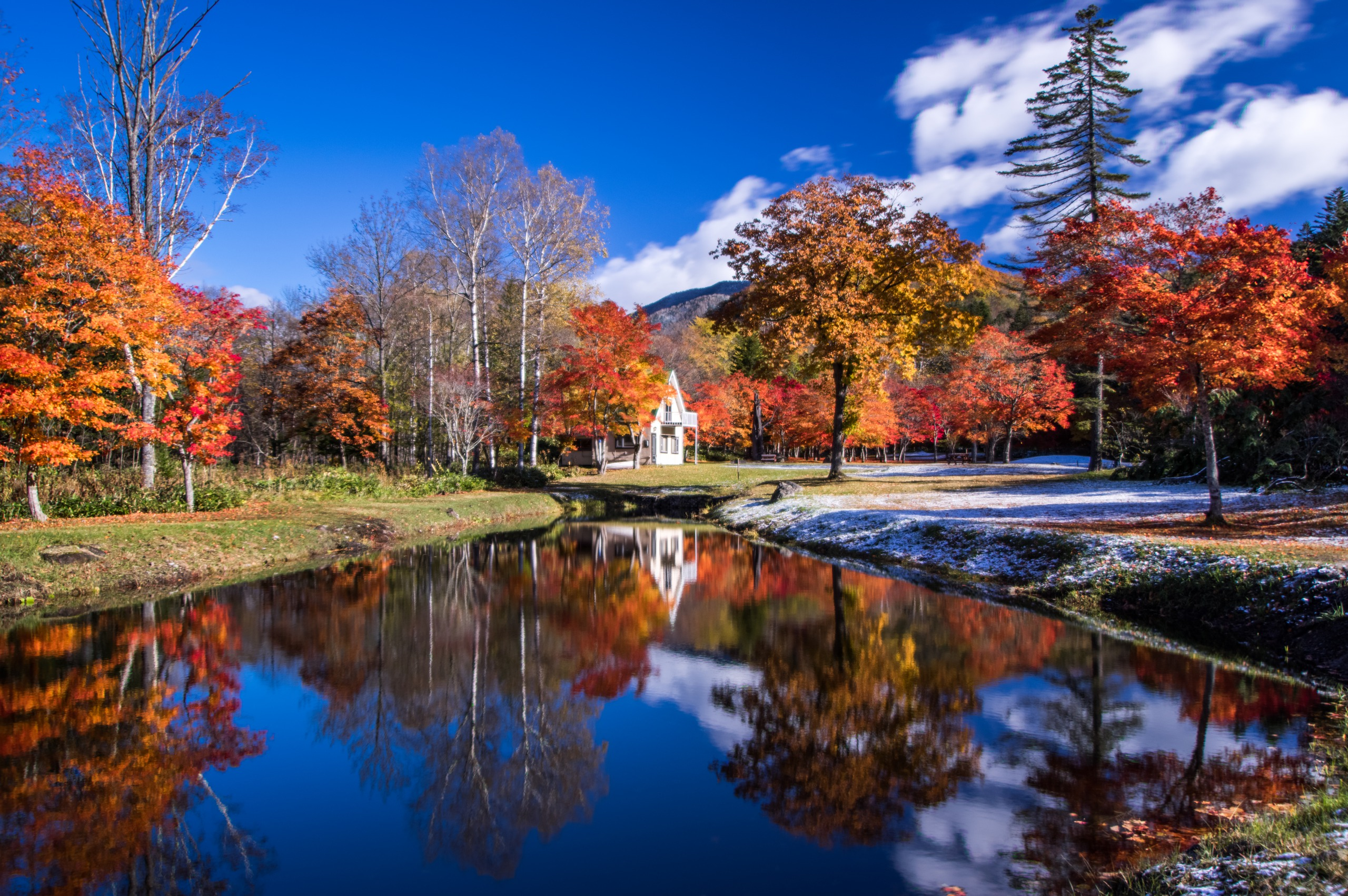 Embrace Fall in a Mountain Villa Where You Can Surround Yourself in Maple Leaves.