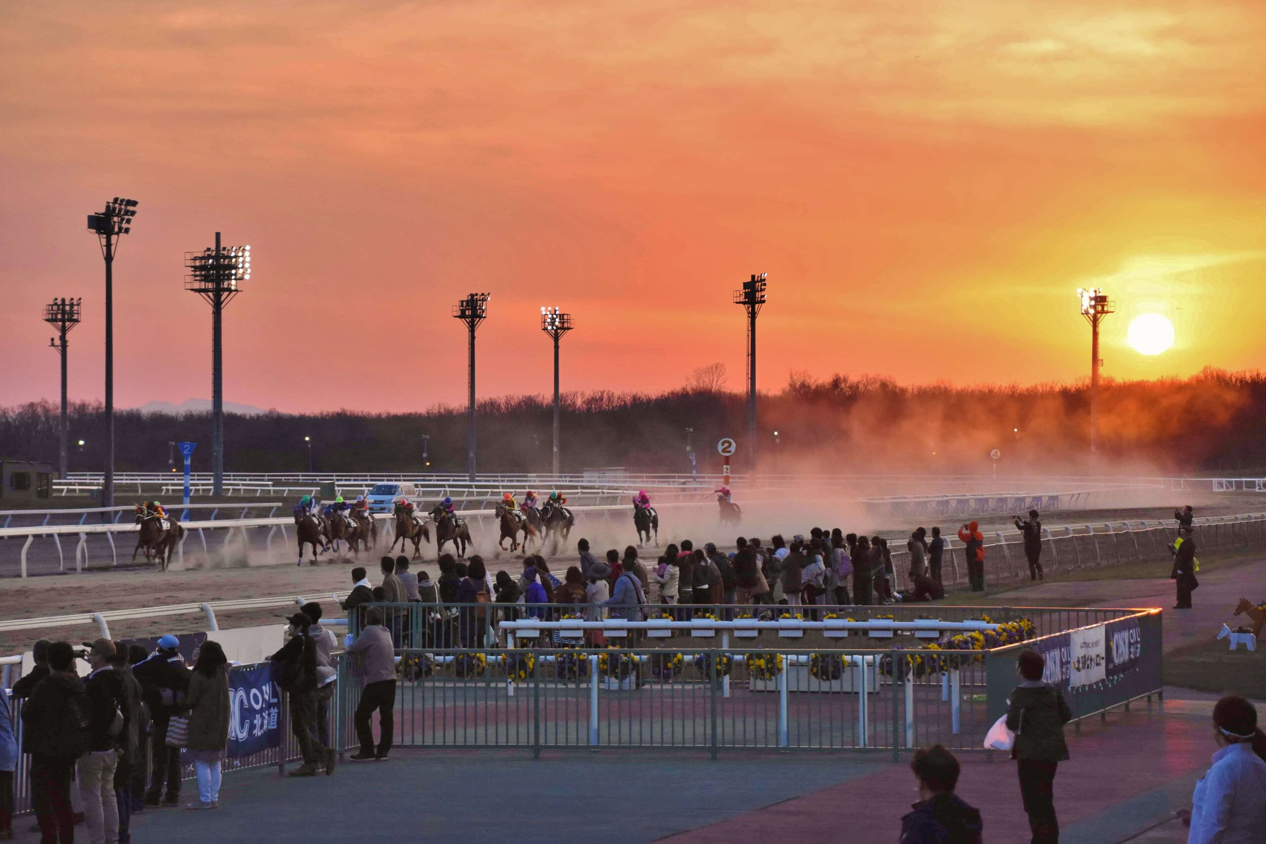 Get Up Close and Personal with the Dynamic Horse Races of the Hidaka Region