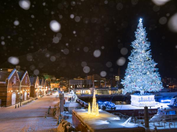 Hakodate Christmas Fantasy: December 1 to 25