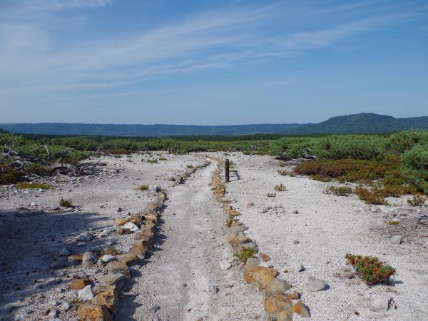 Tsutsujigahara Nature Trail: Mid-June to Mid-July
