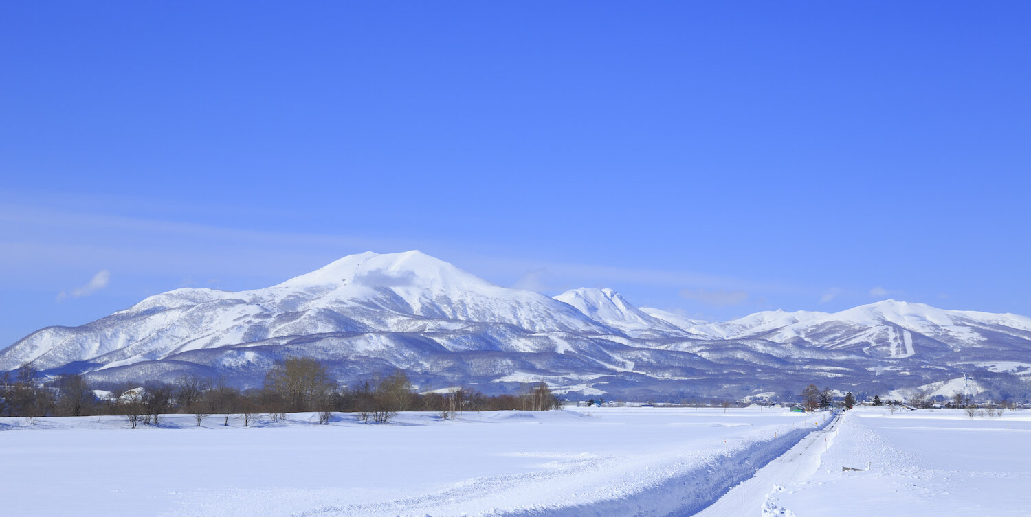 Why go to Niseko? Leave it to quarter-century resident Shouya Grigg to tell you