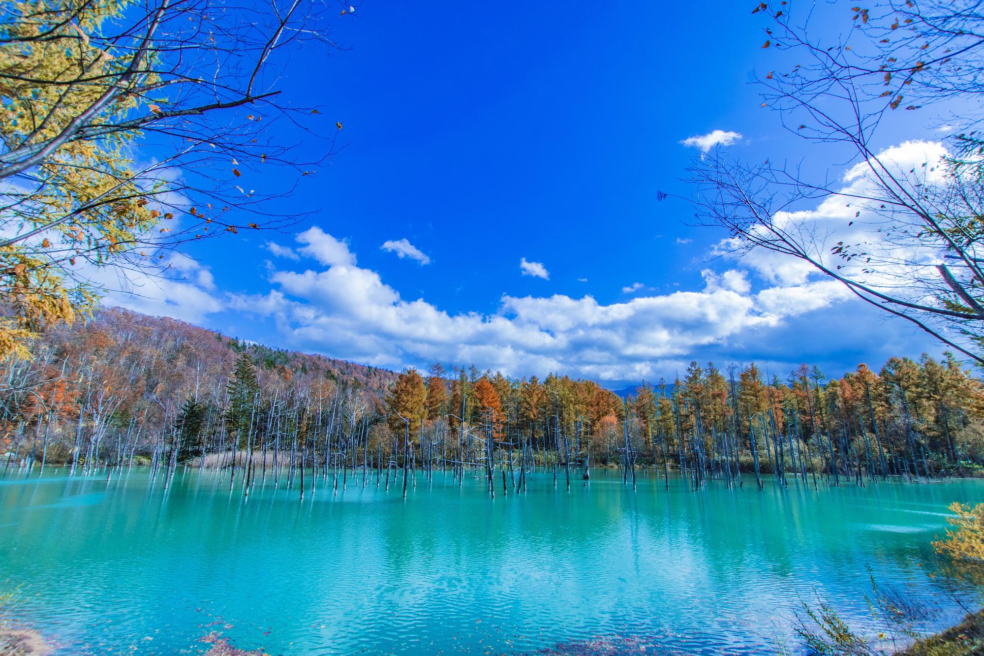 Aoike: The Mesmerizing Blue Pond of Hokkaido