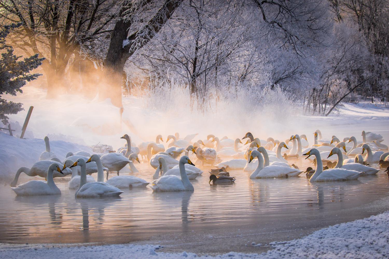 5 Must-Visit Hot Springs in Hokkaido