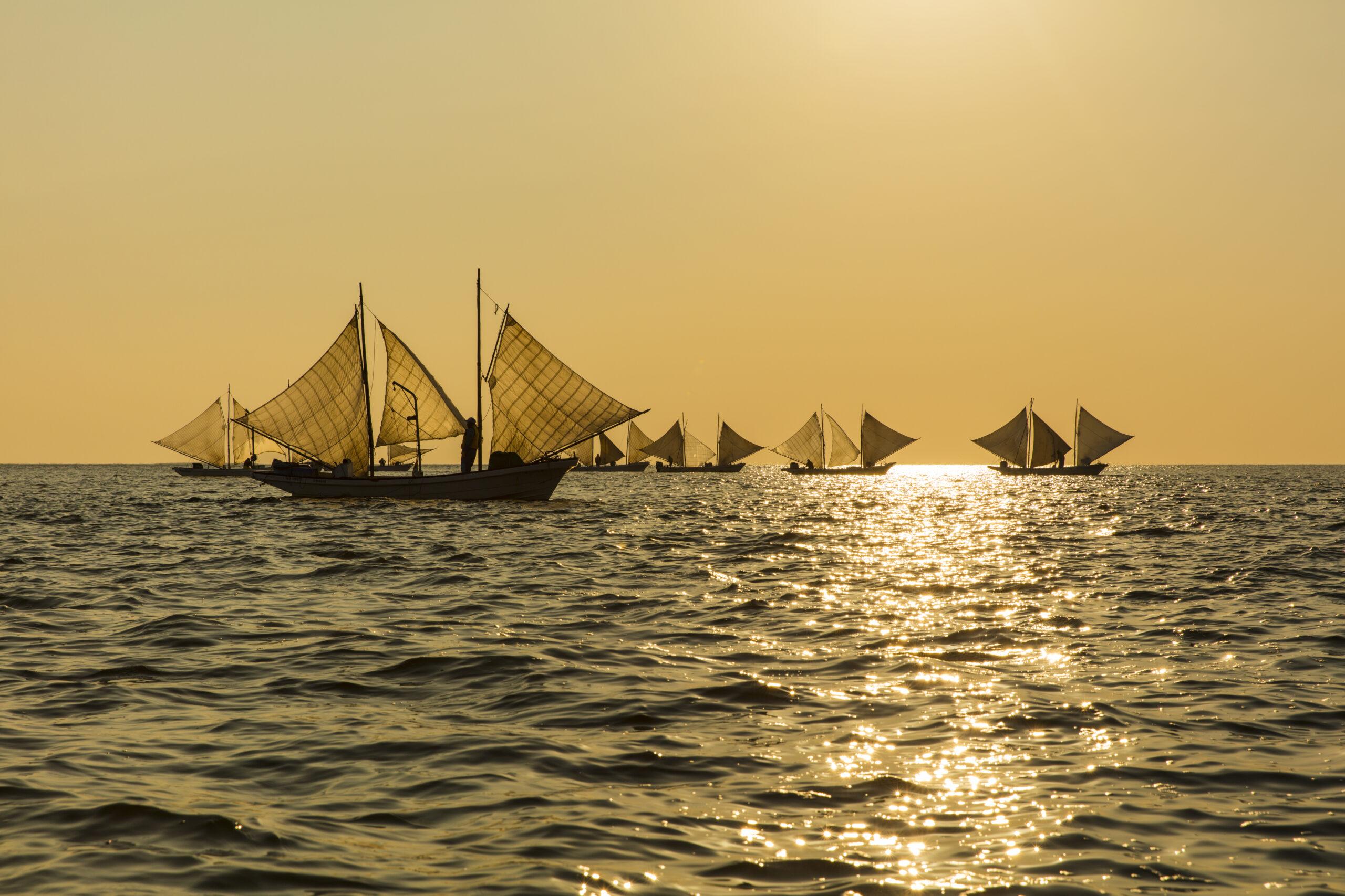 "See Traditional ""Utasebune"" Boats Fishing for Shrimp off the Coast of the Notsuke Peninsula"